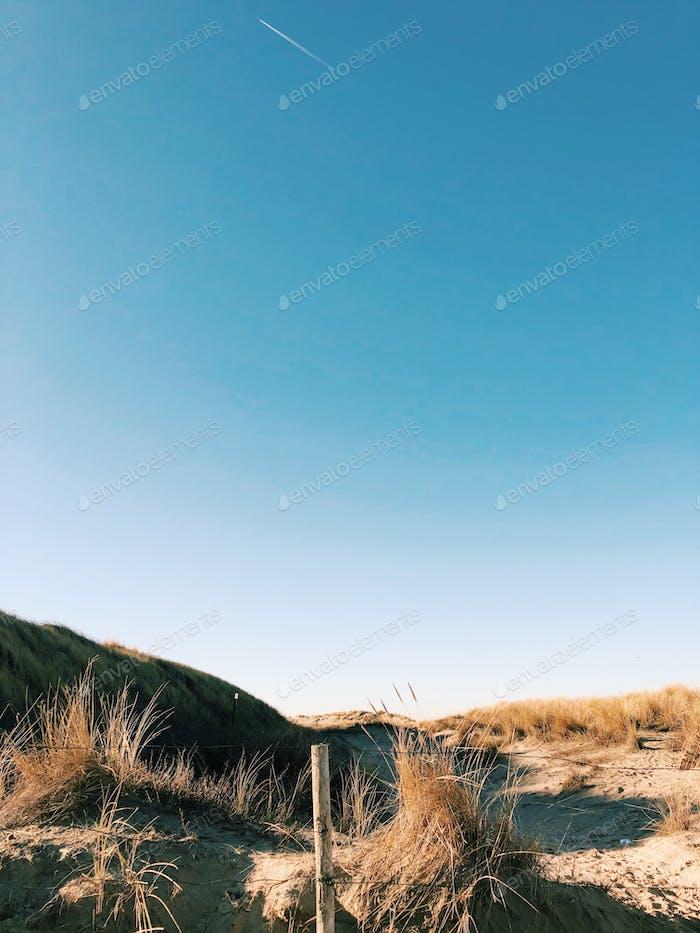 Dunes of The Netherlands