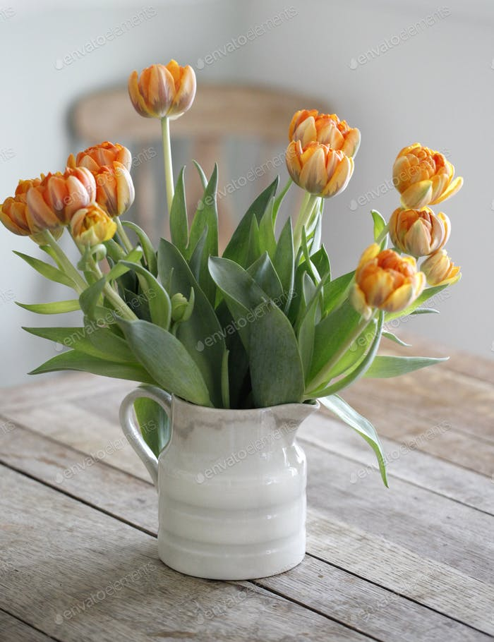 Tulips in milk jug