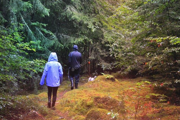 Walking in the wilderness