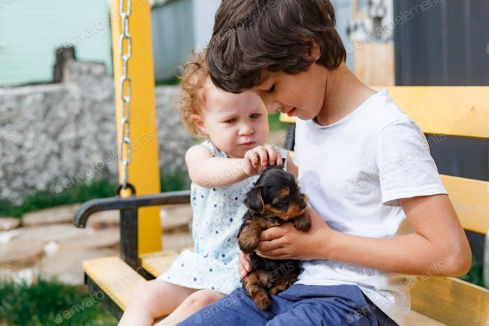 Baby  girl with brother and yorkshire terrier