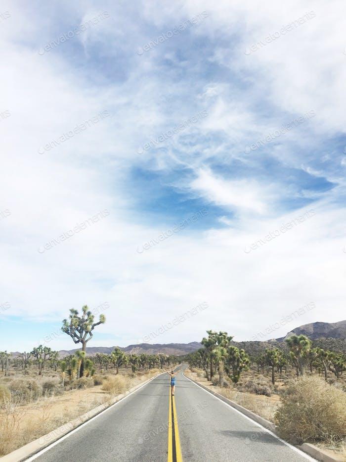 Auf der offenen Straße, Joshua Tree National Park.