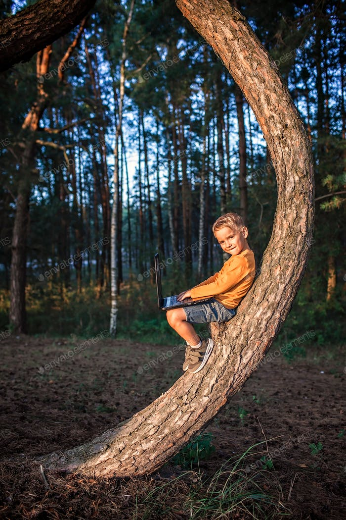 Boy sitting alone on tree in forest with digital device, physical distancing and online education