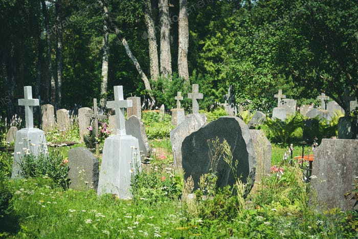 Graves with grave stones at a cemetery in summer.