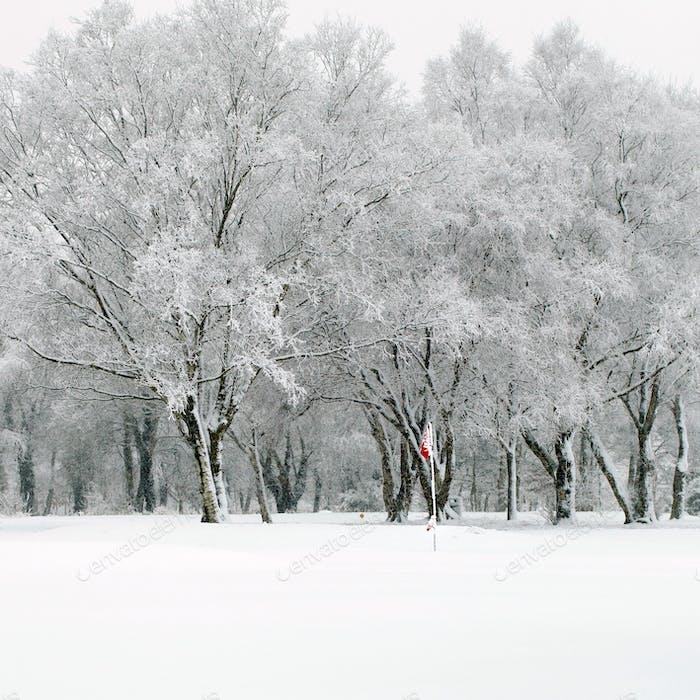 Schneebedeckter Tag auf den Links