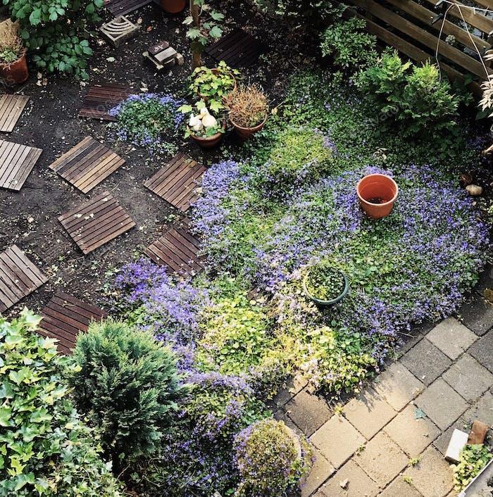 Innerer Garten