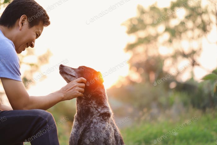 Dog Owner with his dog looking at each other with smiling face at sunset background. Showing love.