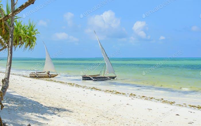 Zanzibar landscape