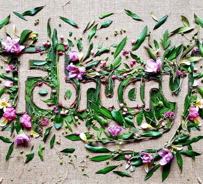 Februar, kreativer Text mit Blumen