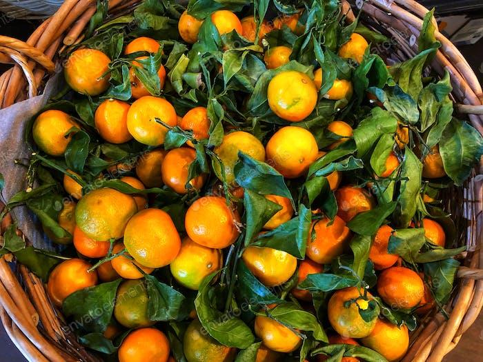 Oranges, oranges, oranges!