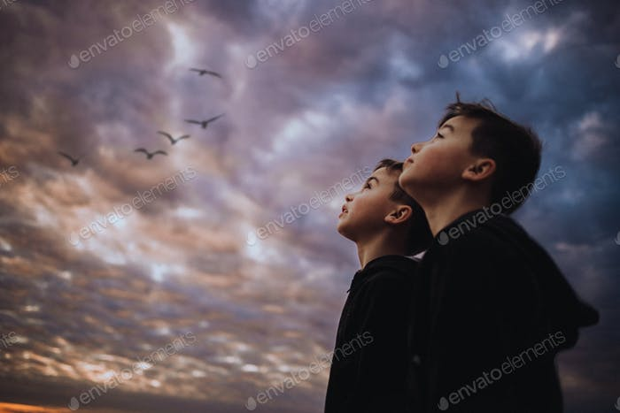 Twin boys looking up to the beautiful sky on a fall early spring evening