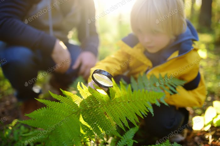 Preschooler boy and his father are exploring nature with magnifying glass