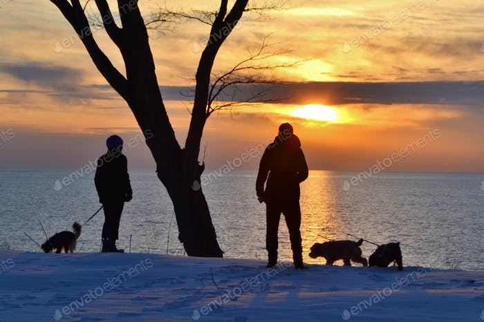 Watching the sunset & walking the dogs!
