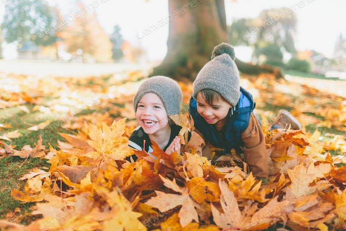 Two little boys playing in a big pile of fall leaves.
