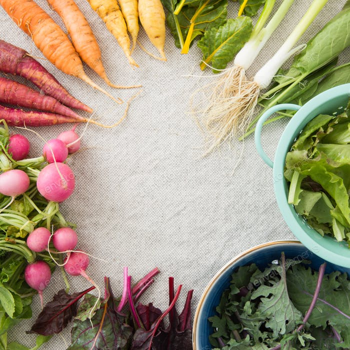 A rainbow of fresh veggies