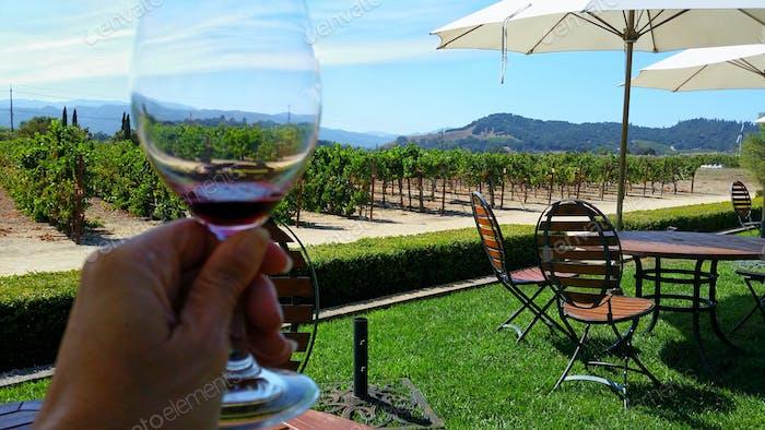 Genießen Sie ein Glas Merlot mit Blick auf den Weinberg in Napa Valley, Kalifornien. Prost!