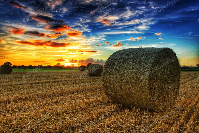 A round bail of hay in a farmers field under a dramatic sunset at harvest time. ⭐️NOMINATED ⭐️