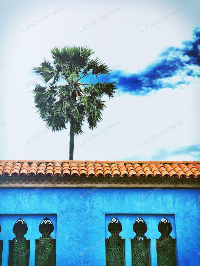 Resort sky