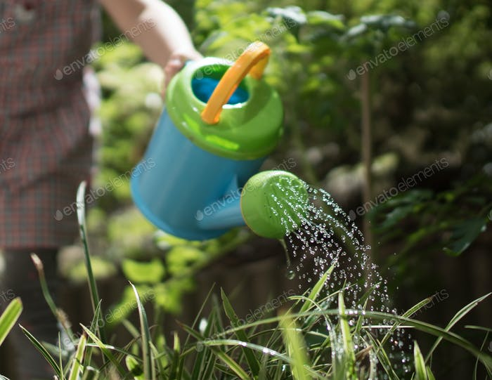 Fresh water strait out of the watering can