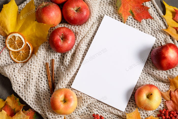 Autumn mood flat lay with notebook, fallen leaves, red berries, apples and warm knitted blanket