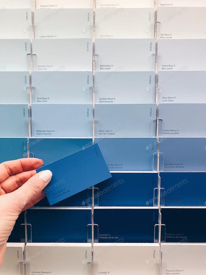 Choosing paint colors. A gradation of blue colors