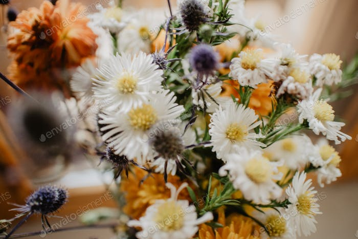 spring season / spring flowers / spring bouquet