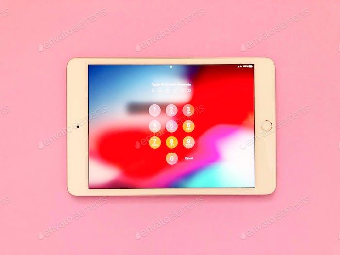 iPad Tablette -Gerät. Mobile Geräte. Technologie. Verwendung von Technologie. Verwenden eines Mobilgeräts. Passwort.