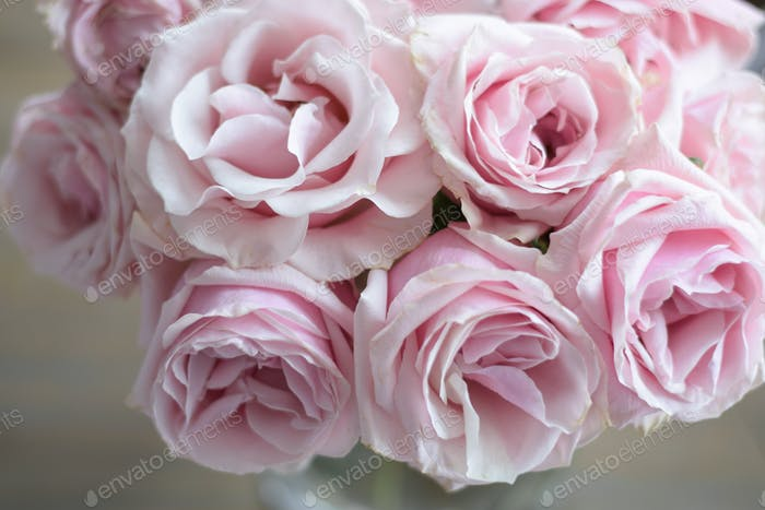 Blush pink roses bouquet