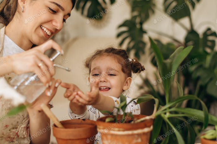 A little girl plants indoor plant in a pot with her mother.A family concept.Home gardening.