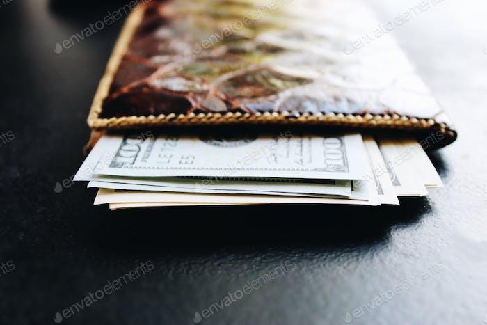Geldbörse mit Dollar 💵