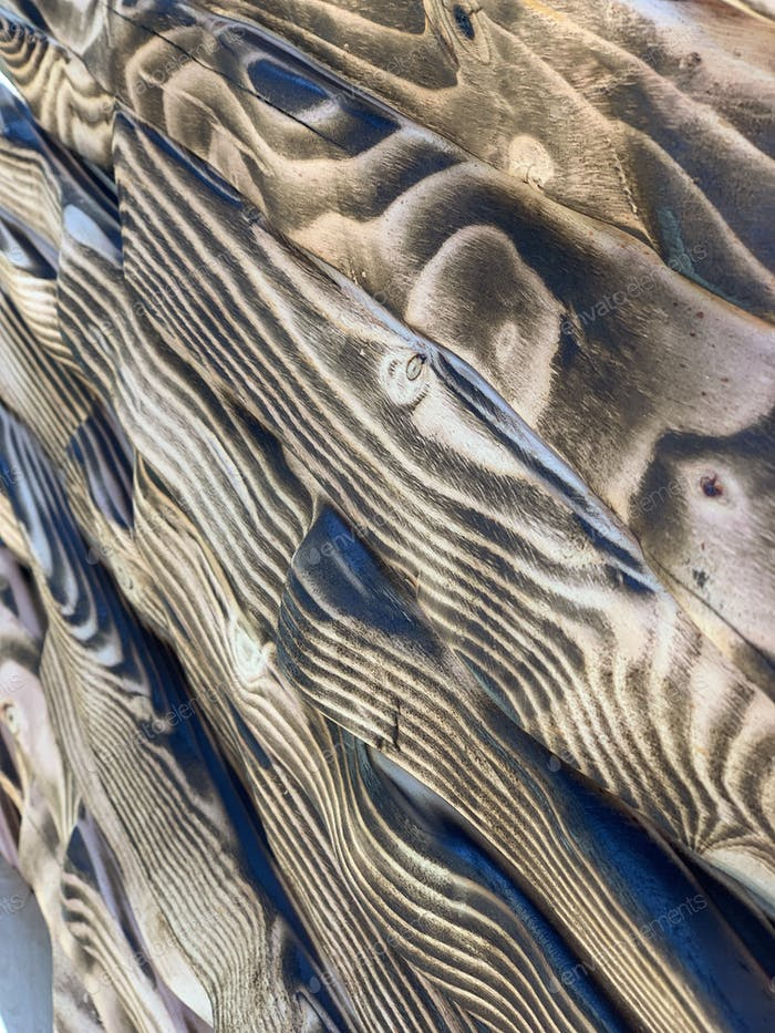 Burned wood grain texture