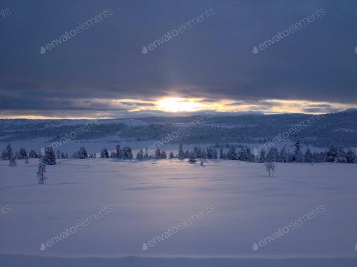 Norwegischer Winter