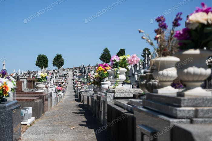 Row of tombstones in a grave yard on a bright sunny day against blue sky