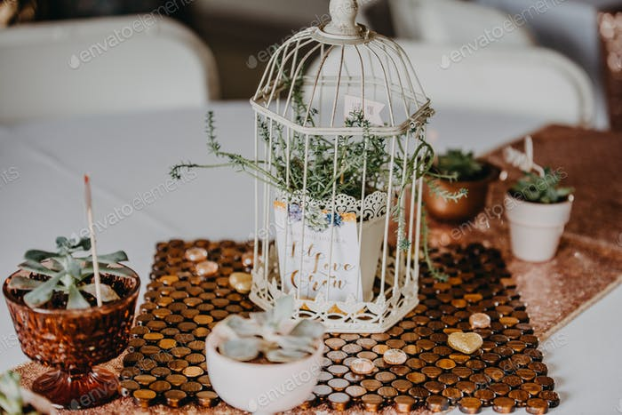 Wedding reception details of plants and birdcage on a placemat and table