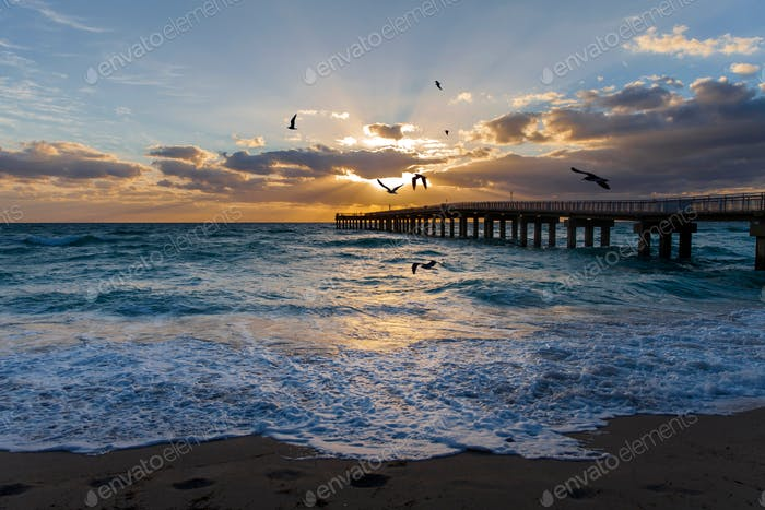 Miami beach at the sunrise, seaside with waves bashing