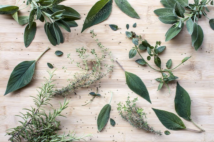 Rosemary, sage, mint, thyme and mentholated sage scattered on a light wooden table
