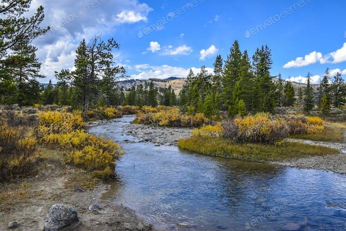 Taylor Creek, Gran Cielo Montana