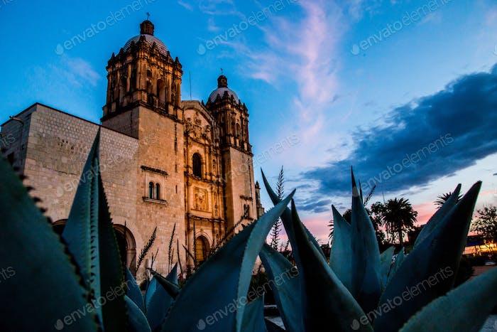 Oaxaca, tierra de mezcal