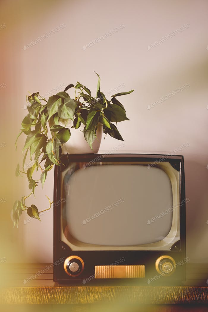 Old vintage retro TV