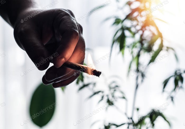 Cannabis joint in hand