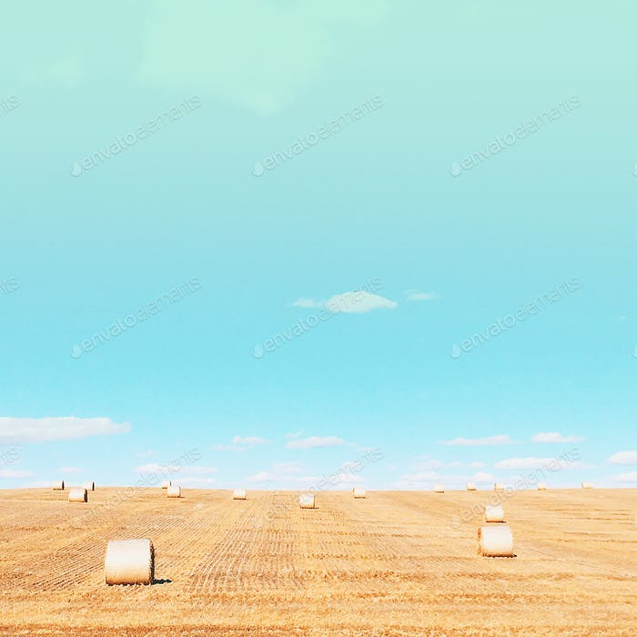 Bails of hay on the farm minimal beautiful open fields and pretty sky
