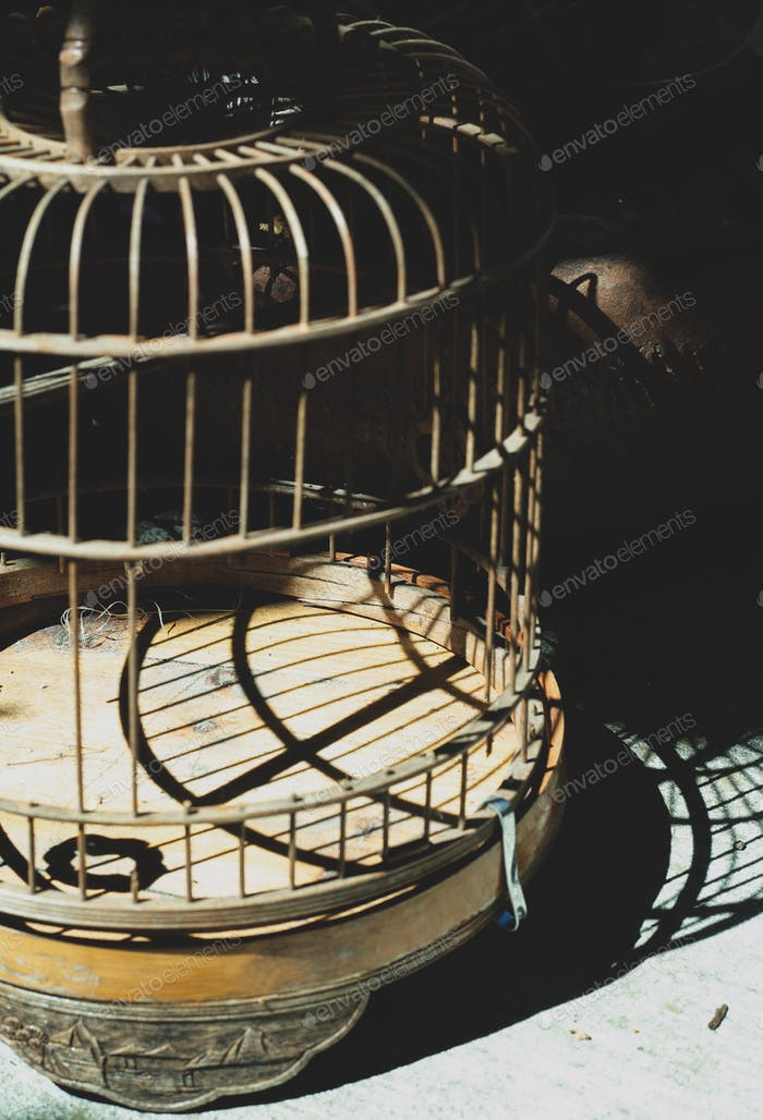 Empty bird cage- shadow and light