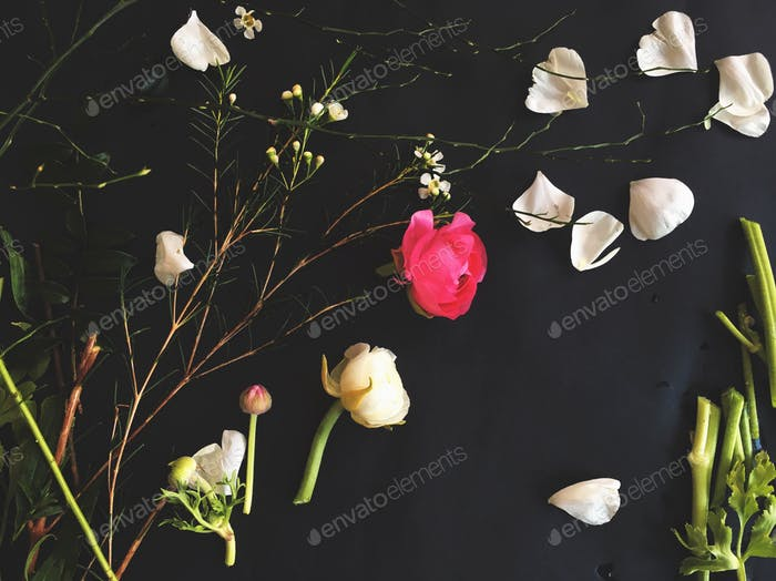Petals, leaves, and stems remains of flower arranging on a dark background.