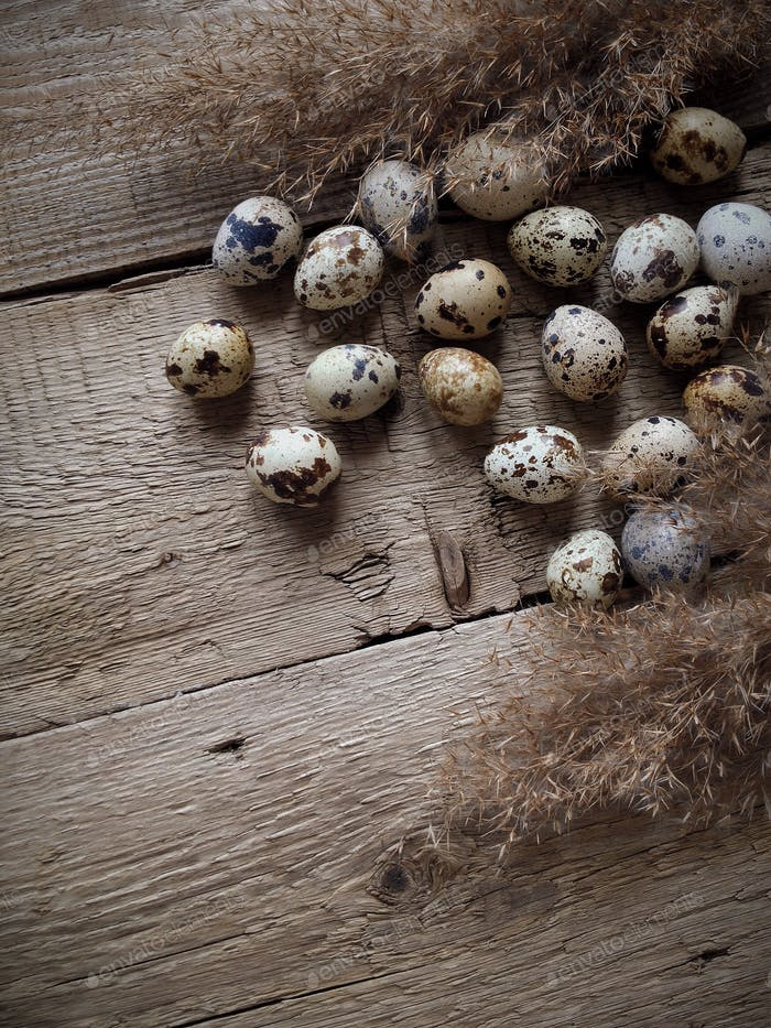 quail eggs rustic wooden background iphoneography