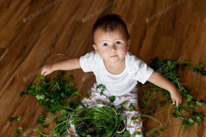 Baby girl playing with cilantro on wooden floor ☀️NOMINATED☀️