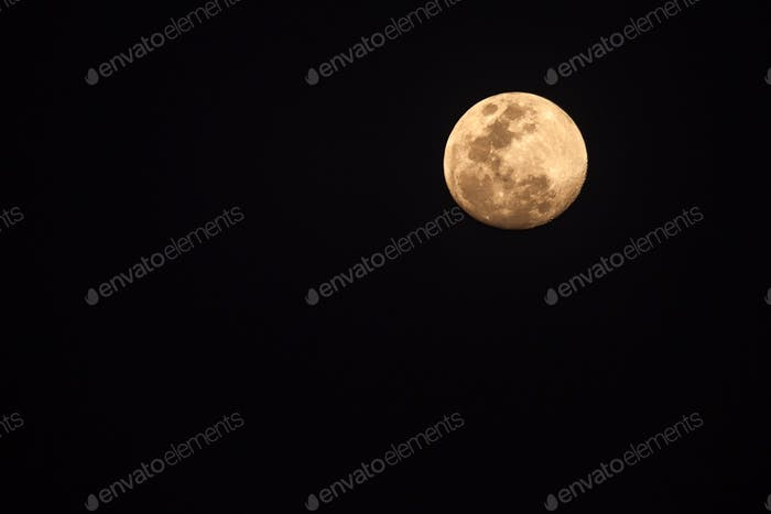 Full moon (nominated on May 20)