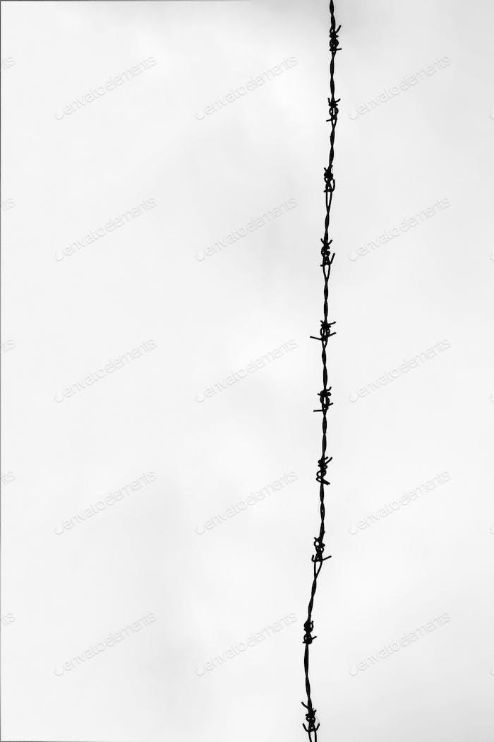 El minimalismo,