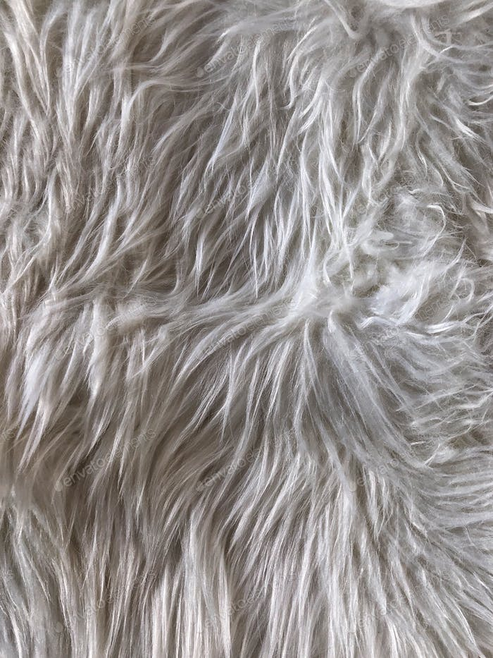 white furry texture background