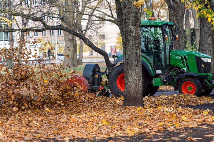 a tractor with a blower cleans a city park lawn and blows away autumn leaves