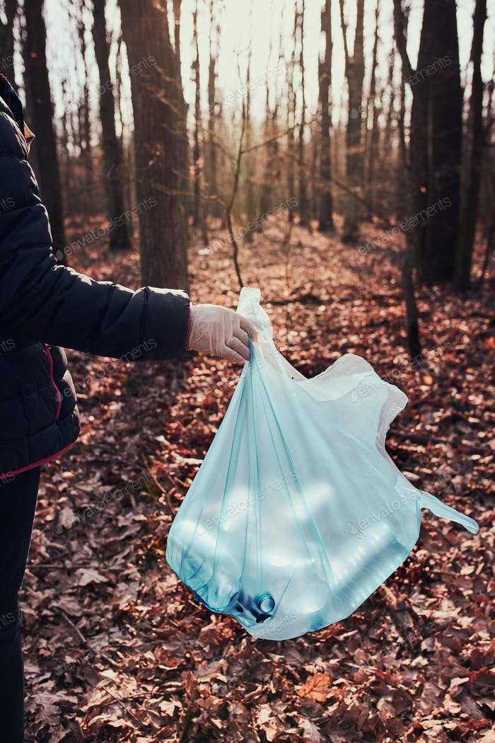 Woman cleaning up a forest