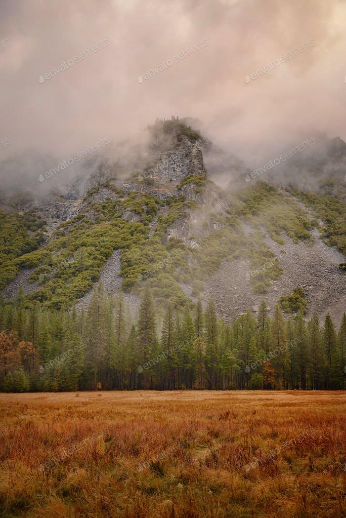 Yosemite National Park Basin